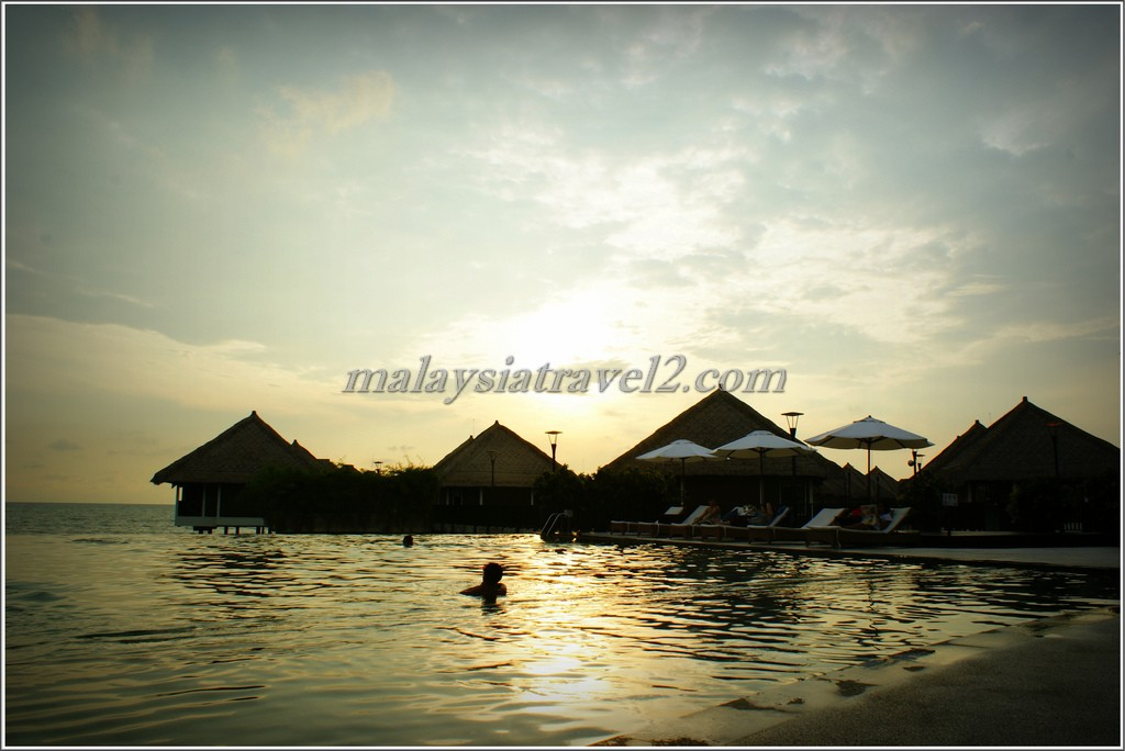 المسبح في فندق جولدن بالم تري ماليزيا4