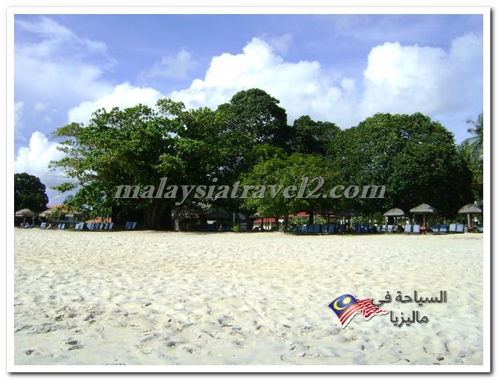 تقارير ماليزيا2