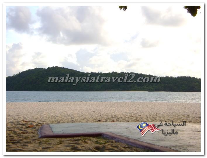 تقارير ماليزيا4