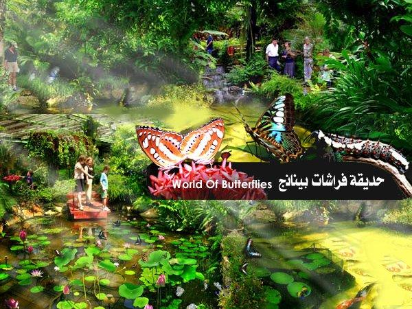 حديقة الفراشات في بينانج penang butterfly farm