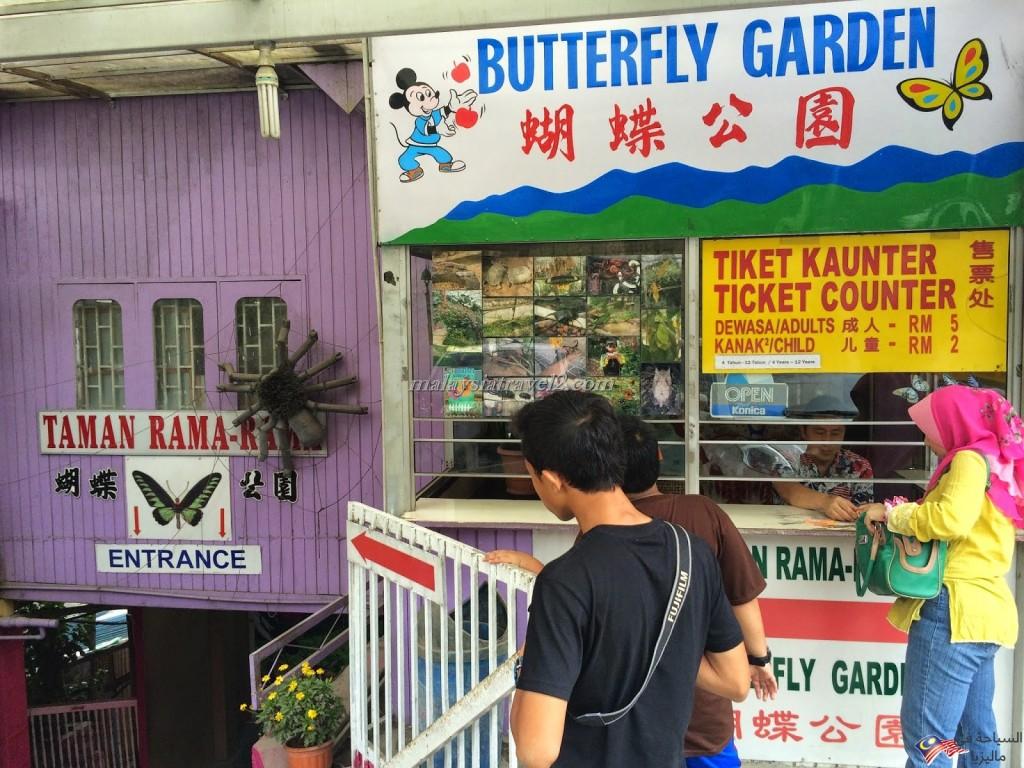 حديقة الفراشات6