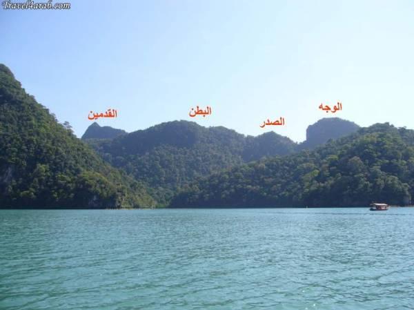 جزيرة العذراء الحامل