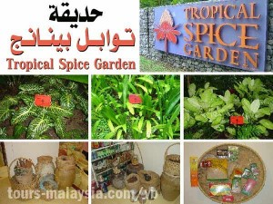 tropical spice gardenحديقه التوابل في بينانج