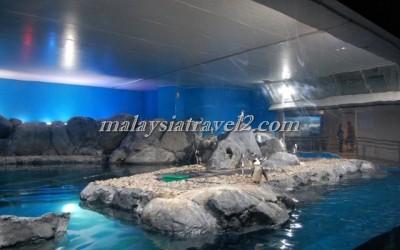 مركز عالم تحت الماءUnderwater World Langkawi8