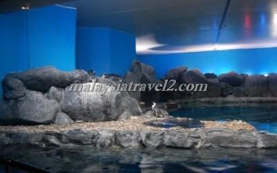 مركز عالم تحت الماءUnderwater World Langkawi9