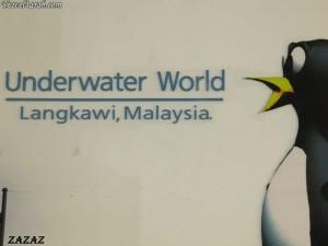 عالم تحت الماء