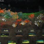 احواض في عالم تحت الماء في لنكاوي