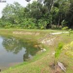بحيرة في حديقة الفواكة في لنكاوي