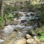مياه جارية في حديقة الفواكة في لنكاوي
