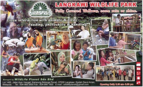 Langkawi Bird Paradiseحديقة الطيور في جزيرة لنكاوي