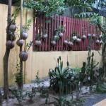 تحف و احافير قديمة حديقة الطيور في جزيرة لنكاوي ماليزيا