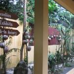 اتجاهات حديقة الطيور في جزيرة لنكاوي ماليزيا