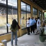 زوار حديقة الطيور في جزيرة لنكاوي ماليزيا