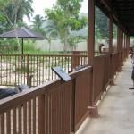 النعام حديقة الطيور في جزيرة لنكاوي ماليزيا