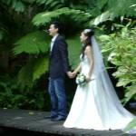 تصوير لعروسين في حديقة التوابل في جزيرة بينانج