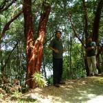 مرشد في حديقة التوابل في جزيرة بينانج