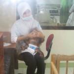 ممرضة تعتني بالغوريلا الرضيعة في جزيرة الغوريلا في بينانج