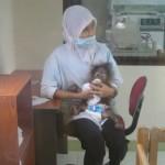 ممرضة في جزيرة الغوريلا في بينانج