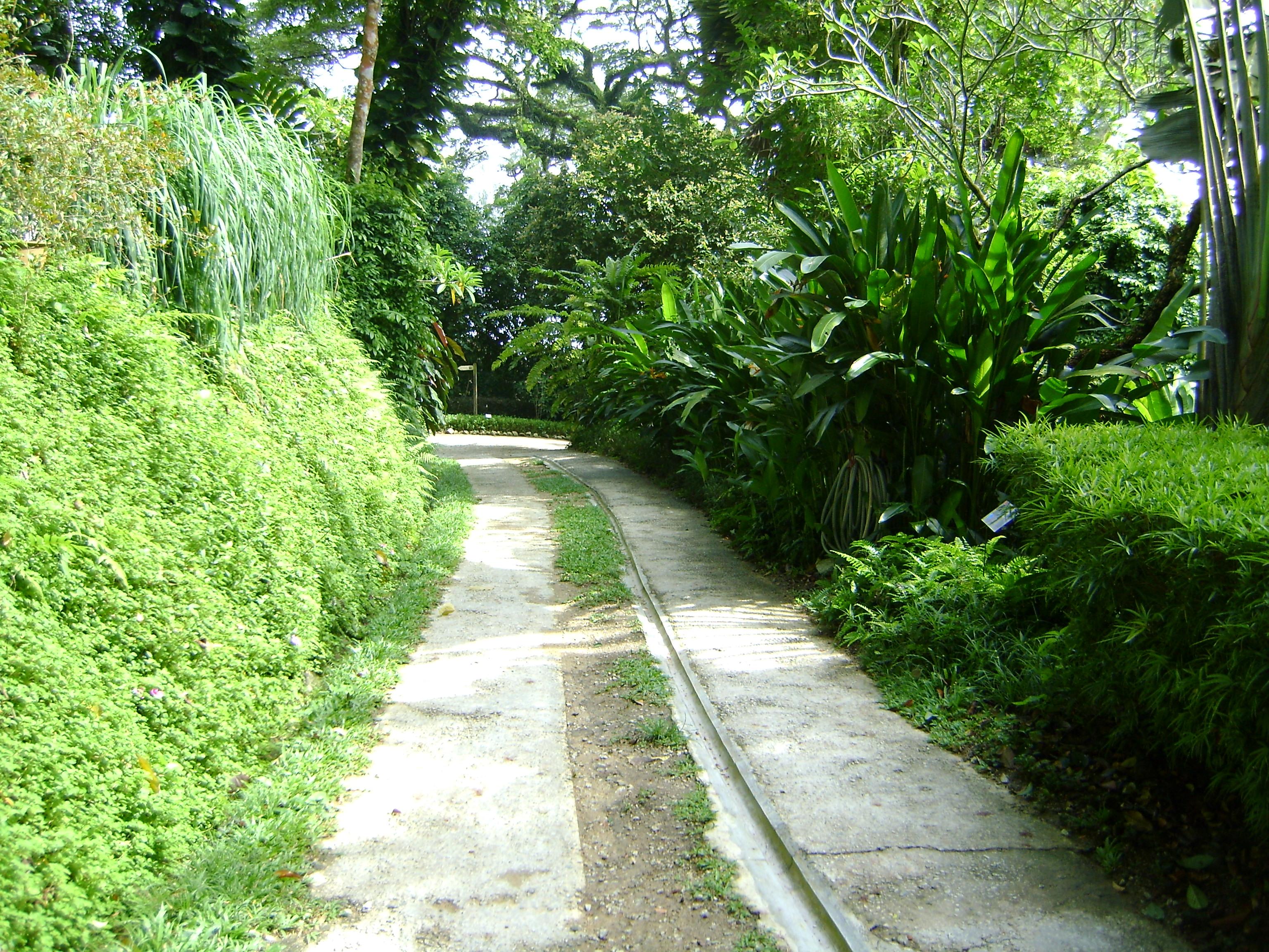 في ماليزيا حديقة للتوابل 2