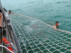 السباحة في رحلة الغروب في