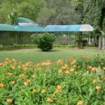 صور من حديقة النباتات