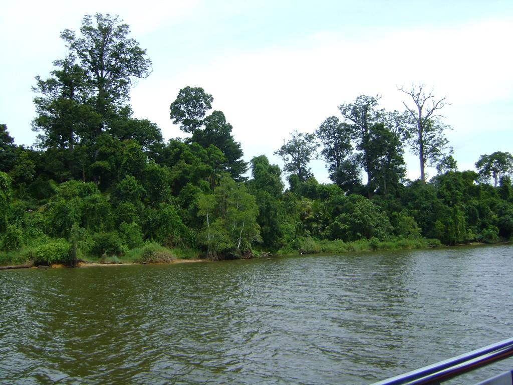 صور من القارب في القارب