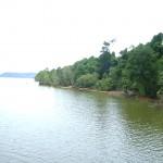 بجوار جزيرة الغوريلا في بينانج