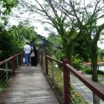 الطريق الى حديقة الحيوانات في جزيرة الغوريلا في بينانج