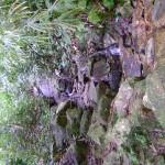 شلال صغير في حديقة التوابل في جزيرة بينانج