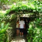 ممرات في الحديقة في حديقة الفراشات في بينانج