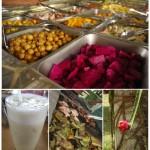 حديقة الفواكة في حديقة الفواكة في بينانج