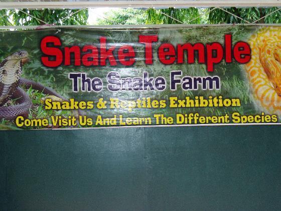 The Snake Temple معبد الافعى في بينانج