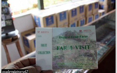 tropical fruit farm حديقة الفواكة في بينانج5