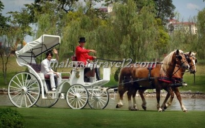 فندق الخيول الذهبية فى سيلانجور The Palace Of The Golden Hors35