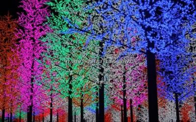 I_City مدينة الأضواء كوالالمبور11