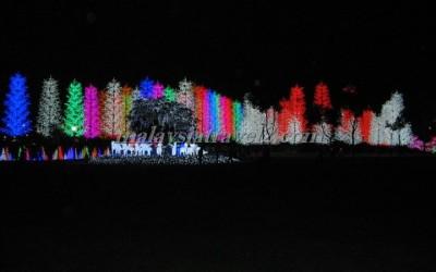 I_City مدينة الأضواء كوالالمبور37
