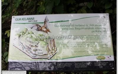 MANGAROVE LANGKAWI-المانغروف - لنكاوي1