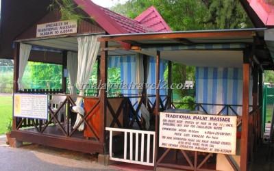 Bayview Beach Resort Penang فندق باي فيو بيتش في جزيرة بينانج ماليزيا35