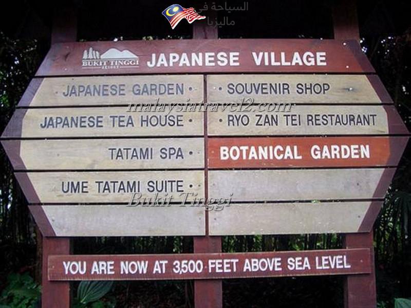 bukit-tingg-japanese-villagei13