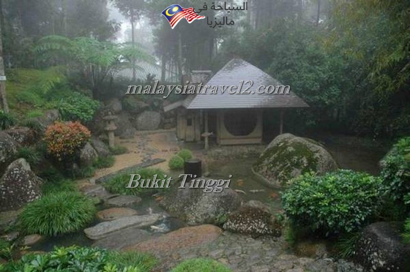 bukit-tingg-japanese-villagei14