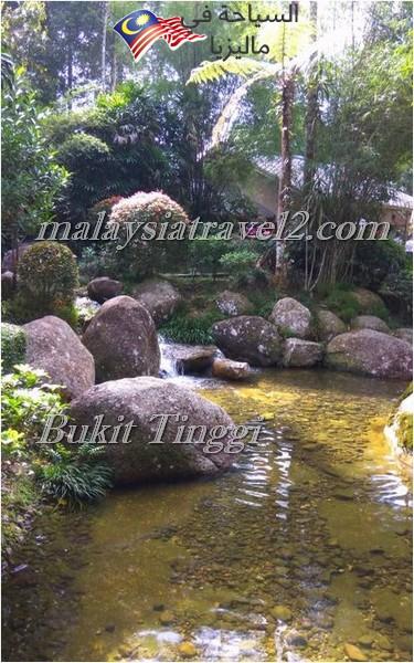 bukit-tingg-japanese-villagei2