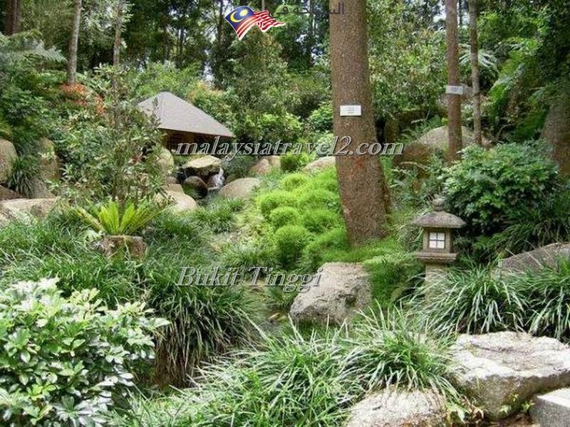bukit-tingg-japanese-villagei8