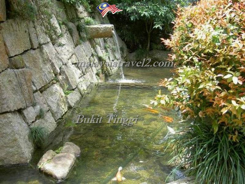 bukit-tingg-japanese-villagei9
