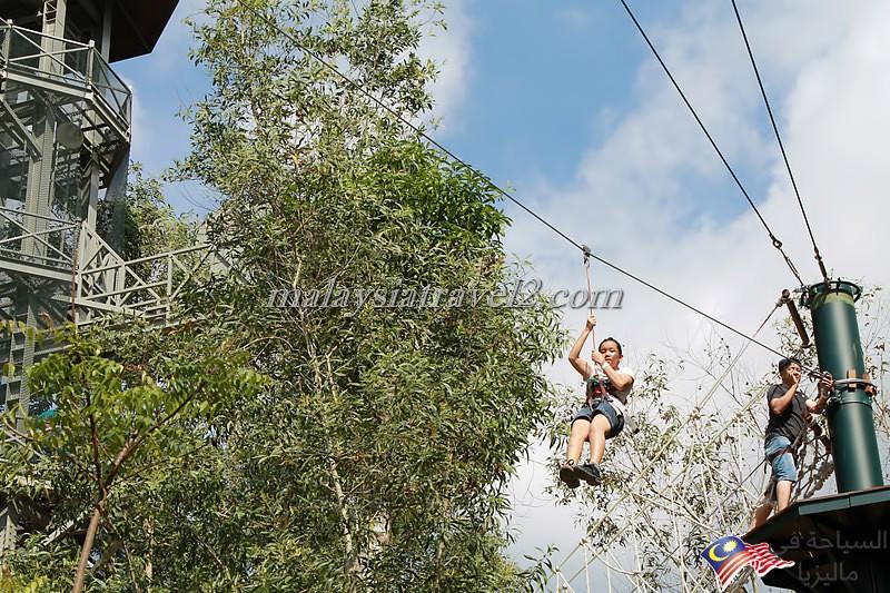Free Fall & Zip Lining2