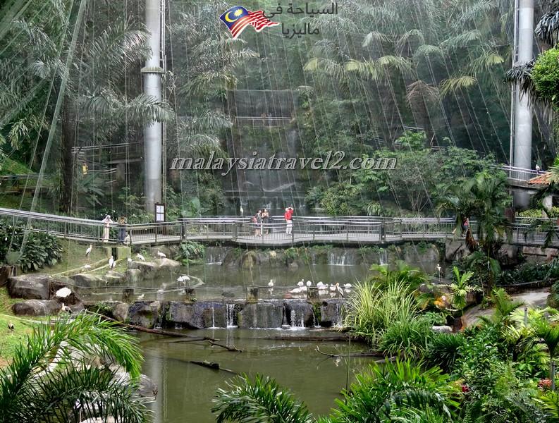kl-bird-park13