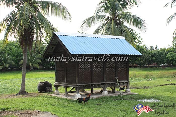 Langkawi Rice Museum2