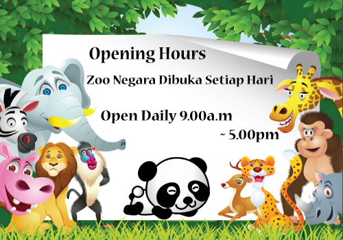 Opening-hours-and-rates