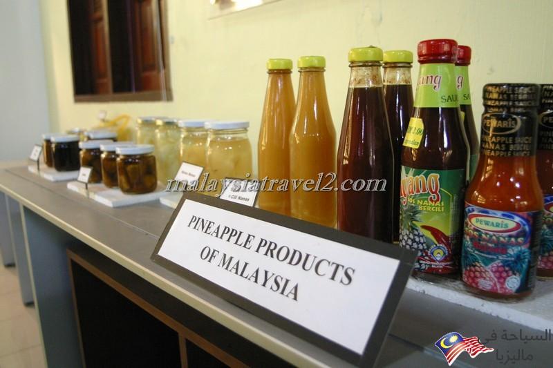 Pineapple Museum3