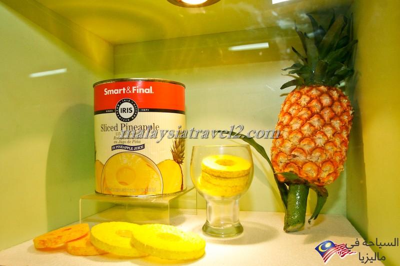 Pineapple Museum4