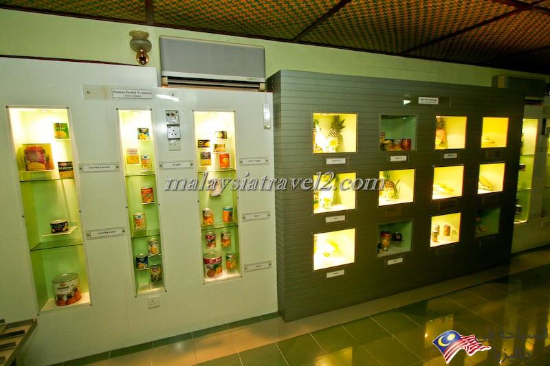 Pineapple Museum5
